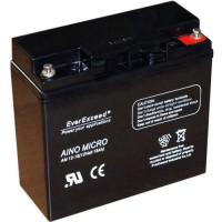 Аккумуляторная батарея EverExceed AM-1218
