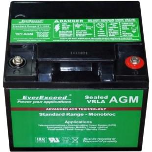 Аккумуляторная батарея EverExceed ST-1240