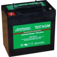 Аккумуляторная батарея EverExceed ST-1255