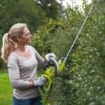 Выбор кустореза, сучкореза и садовых ножниц