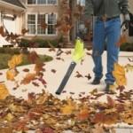 Выбор воздуходува и садового пылесоса